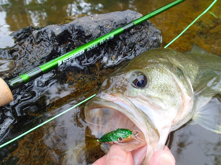 Selecting the correct fly fishing rod fly rod weight for Trout fishing pole