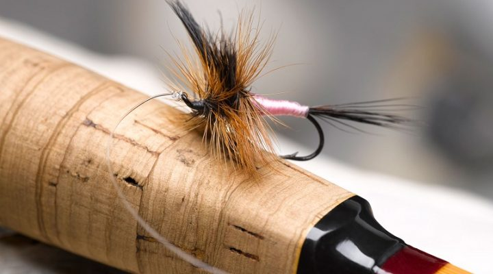 10 Best Flies for catching Trout in South Africa (part 1)