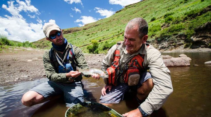 10 best flies for catching trout in South Africa (part 4)